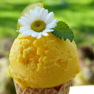 Fragrance Sorbet au Citron