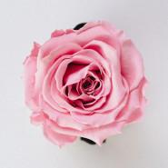 Extrait pour parfum Rose