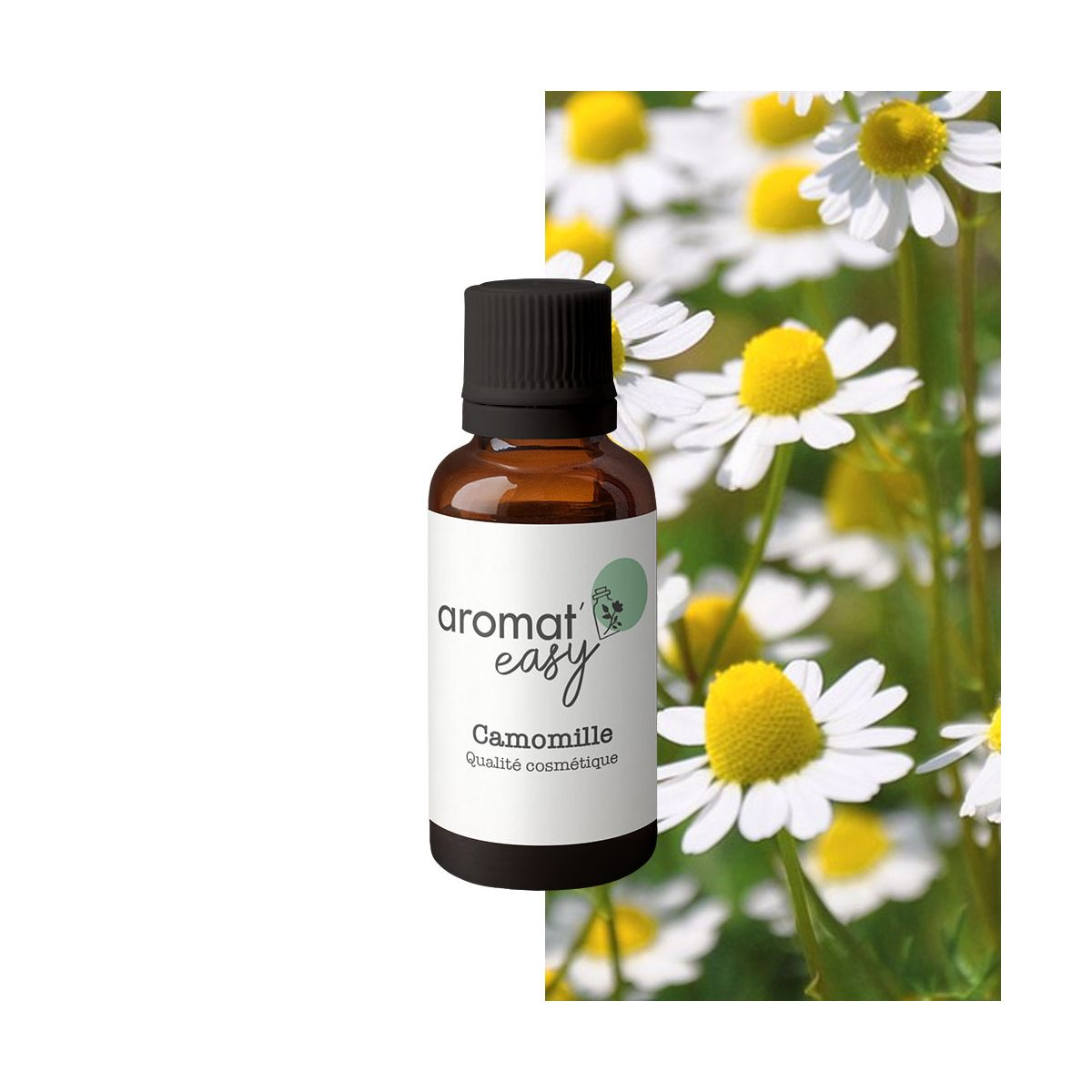 Fragrance Camomille