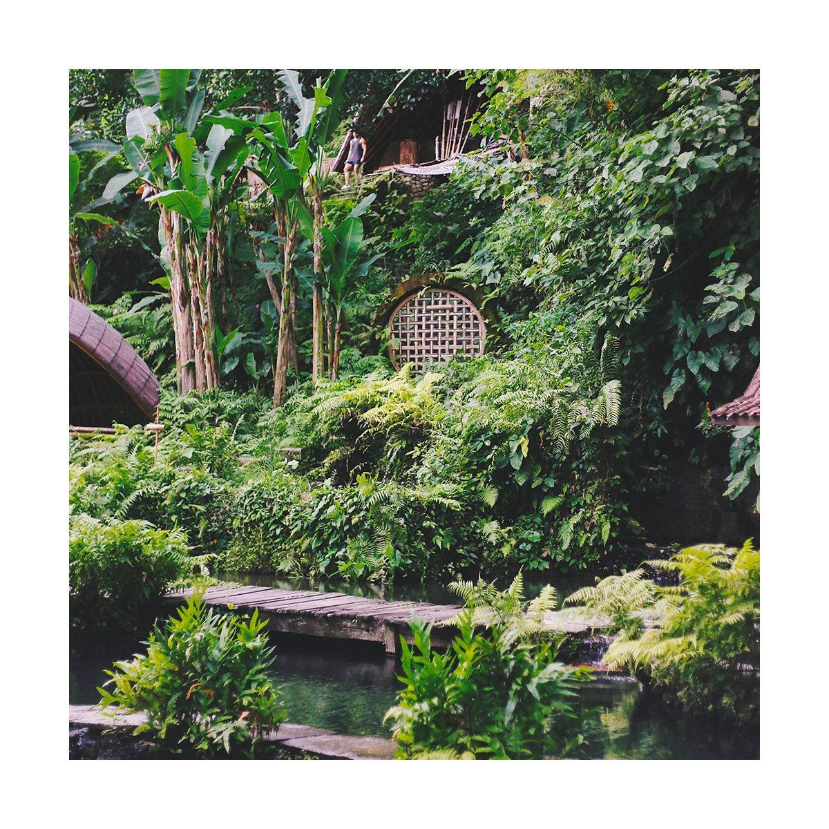 Fragrance Jardin d'été