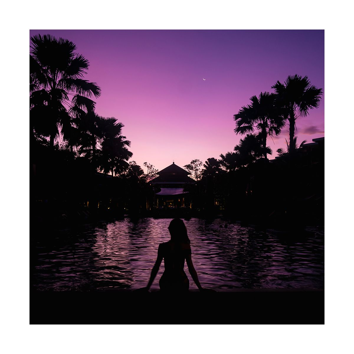 Fragrance Purple H