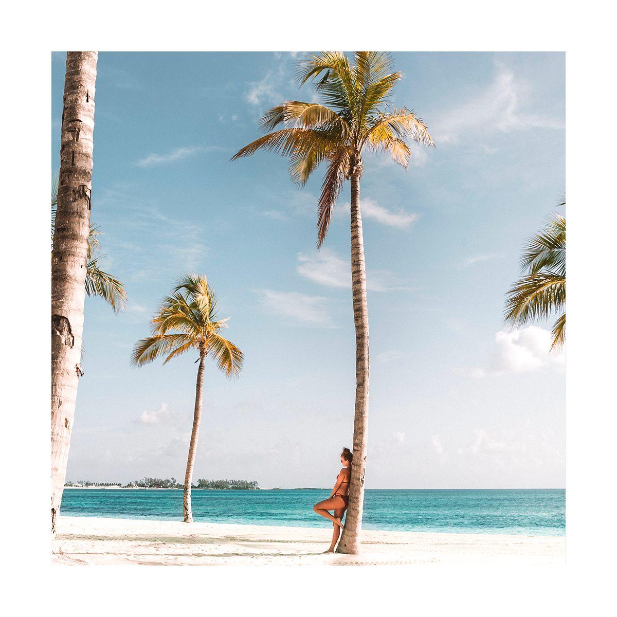 Fragrance Palm Beach